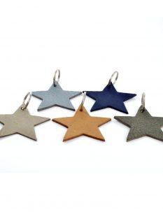 1747a-sleutehangers-alle-kleuren-ster_1